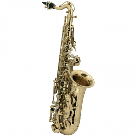 Детский альт-саксофон Roy Benson AS-201
