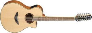 Двенадцатиструнная гитара  APX-700II-12