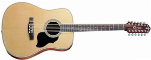 Двенадцатиструнная гитара Crafter MD50-12