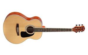Фолк гитара Colombo 4021