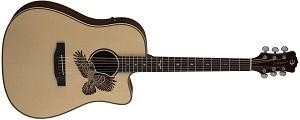 Акустическая гитара Luna AME 100