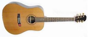 Акустическая гитара Strunal D978