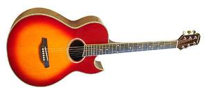 Акустическая гитара Martinez FAW-805