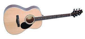 Акустическая гитара GregBennett GA100S
