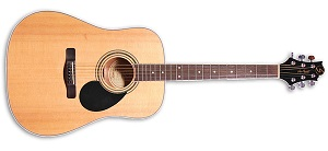 Акустическая гитара Greg Bennett GD101 S/N
