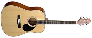 Акустическая гитара GregBennett GD-60