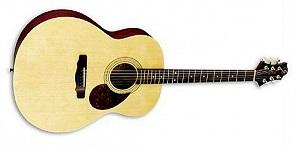 Акустическая гитара Greg Bennett GJ100 S/N