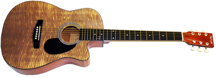 Фолк-гитара Homage LF-3800