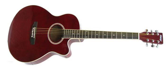 Фолк - гитара Homage LF-401C