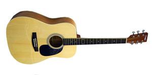 Акустическая гитара Homage 4100