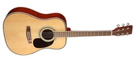 LF-4123 Акустическая гитара HOMAGE
