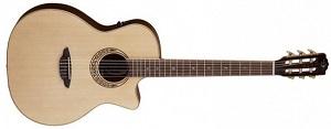 Акустическая гитара Luna Mus Nyl