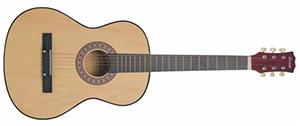 Акустическая гитара Terris TF-3802A