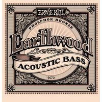 Ernie Ball Acoustic Bass