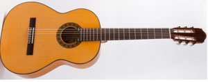 Гитара фламенко Raimundo 125F