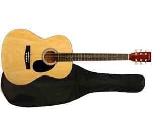 Классическая гитара Homage LC-3900 BAG