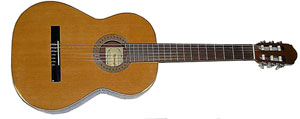 Гитара Raimundo R112