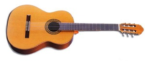 Испанская классическая гитара Raimundo R-123-C
