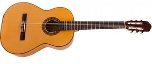 Испанская классическая гитара Raimundo R-125-P