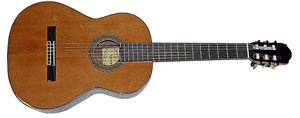 Классическая гитара Raimundo R-128C