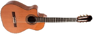 Испанская классическая гитара Raimundo R-615E