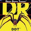 DR DDT
