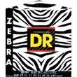 DR Zebra