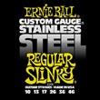 Ernie Ball Regular Slinky (steel)