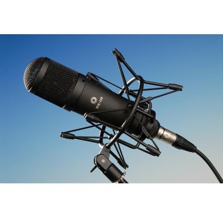 Конденсаторный студийный микрофон Октава МК-419-Ч